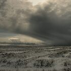 Snow storm, North Denes, Great Yarmouth by Alex Drozd