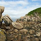 Rocks on the shore by John Butterfield