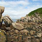 Rocks on the shore by John Butterfield