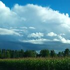 Clouds and Corn by vette