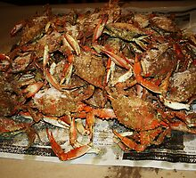 Maryland Hot Steamed Crabs by Paulette1021