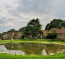 Ashmore Pond - Dorset Highest Pond. 2 by delros