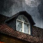 Broken window by Carina514