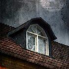 Broken window by Carina514