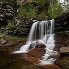 B. Reynolds Falls by Tim Devine