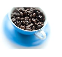 wake-up cup Photographic Print