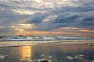 sun rays in Daytona by dc witmer