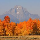 Fall in Wyoming by aussiedi