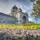 Royal Exhibition Buildings by Richard  Cubitt