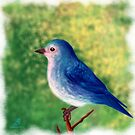 Little blue bird by Subhrajit Datta