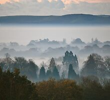 A Misty Winter's Morning - Cuckfield (8) by Matthew Floyd