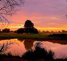 Rural Sunrise by Herb Spickard