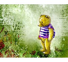 Botanical Bear Photographic Print