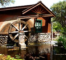 Water Mill by Charmiene Maxwell-batten