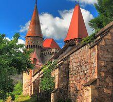 Vajdahunyadi vár II (castle)  by zumi