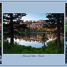 Tamarack Triptych by Kurt Golgart