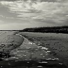 Lang Lang Beach, VIC Australia by Alison  Eno