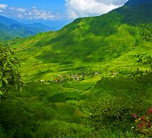 Can Ho, Sapa, Vietnam. by bulljup