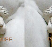 Pleasure/Pain by Jeffrey Rowekamp