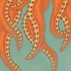 Tentacles by Ecil Holbrook