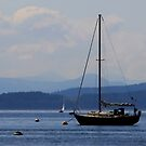 sailing layers of blue by TerrillWelch
