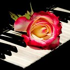 MUSICAL ROSE~made a Sale today..greeting card! by RoseMarie747