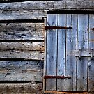 Barn Door by Sheryl Gerhard