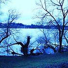 in the blue of winter by marysia wojtaszek