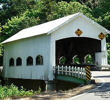 Rochester Covered Bridge by 2HivelysArt
