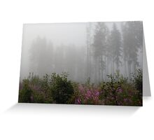 Forest in mist with wild flowers Greeting Card