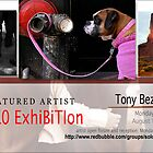 Tony Bezsylko by solo-exhibition
