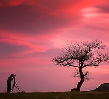 The Photographer - Dog Rocks by Hans Kawitzki