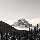 Peak at Lake Louise by Ryan Davison Crisp