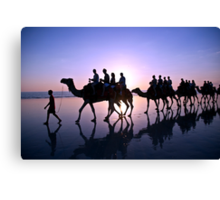 Camels in the Sunset Canvas Print