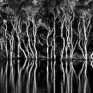 Bay of Fires creek. by Victor Pugatschew