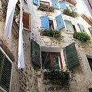 Rovinj windows by machka