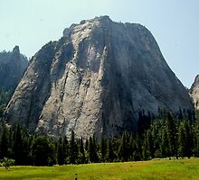 Yosemite...Rock Sculptures by davesdigis