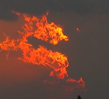 July departed like a Fire Dragon by MarianBendeth
