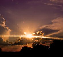 Sunset_Sun Rays  by Linda Yates
