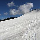 Basin Peak ~ Back Side  by Patty (Boyte) Van Hoff