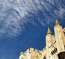 Palais des Papes by Ruth Smith
