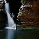 hidden beauty by peter  jackson