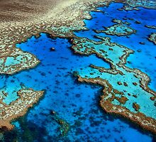 Hardy Reef Lagoon by Jill Fisher