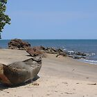 Fishing boat - Kribi, Cameroon by stephangus