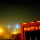 Cambridge by Christine Elise McCarthy