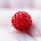 wild strawberry in my hand by netza