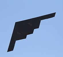 Northrop Grumman B-2 Spirit of Alaska by fototaker