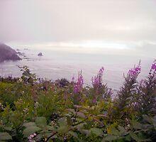 Lavender Hues by marilyn diaz