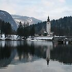 Slovene Reflection by danielrp1