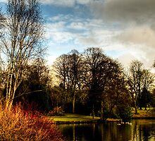 Longton Park in February by David J Knight